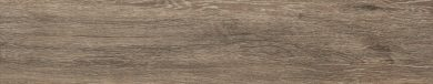 Catalea brown - 7