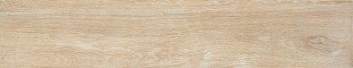 Catalea desert - 7