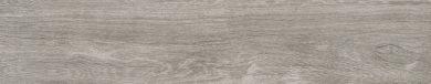 Catalea gris - 7