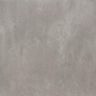 Tassero gris - 24